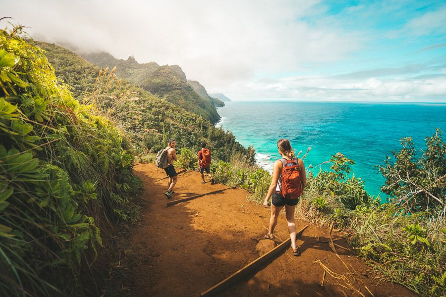 Hike On The Famous Walking Tracks